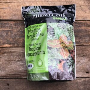 terreau plantes tropicales