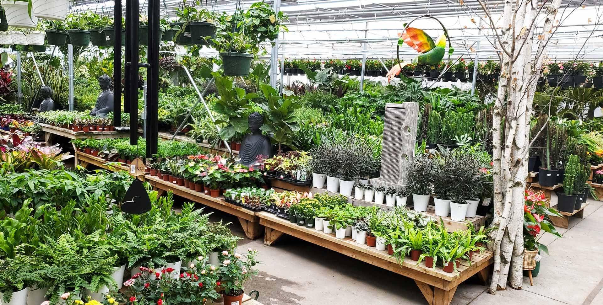 Centre Jardinage Granby
