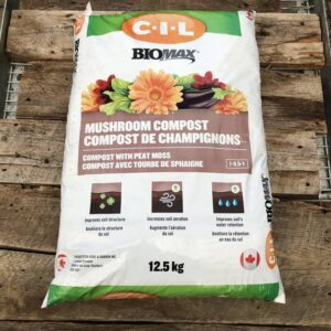 Compost de champignon
