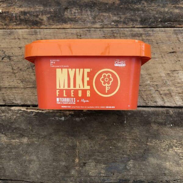 myke vivace